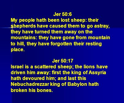Jer 50:6