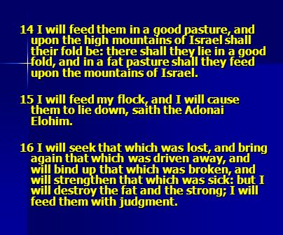 14 I will feed them in a good pasture, and upon the high mountains of Israel shall their fold be: there shall they lie in a good fold, and in a fat pasture shall they feed upon the mountains of Israel.