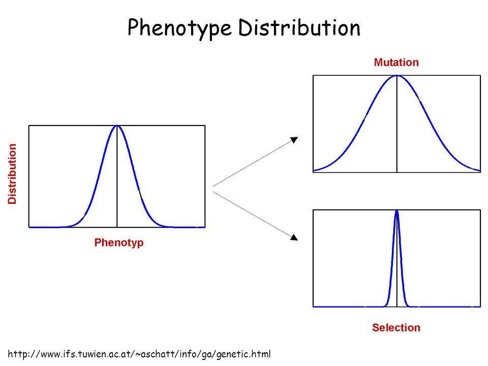 Phenotype Distribution