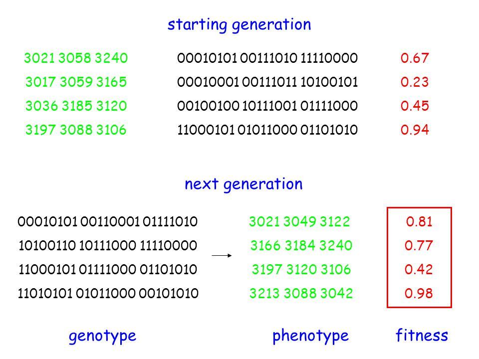 starting generation next generation genotype phenotype fitness