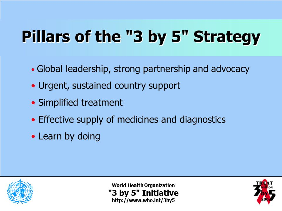 Pillars of the 3 by 5 Strategy World Health Organization