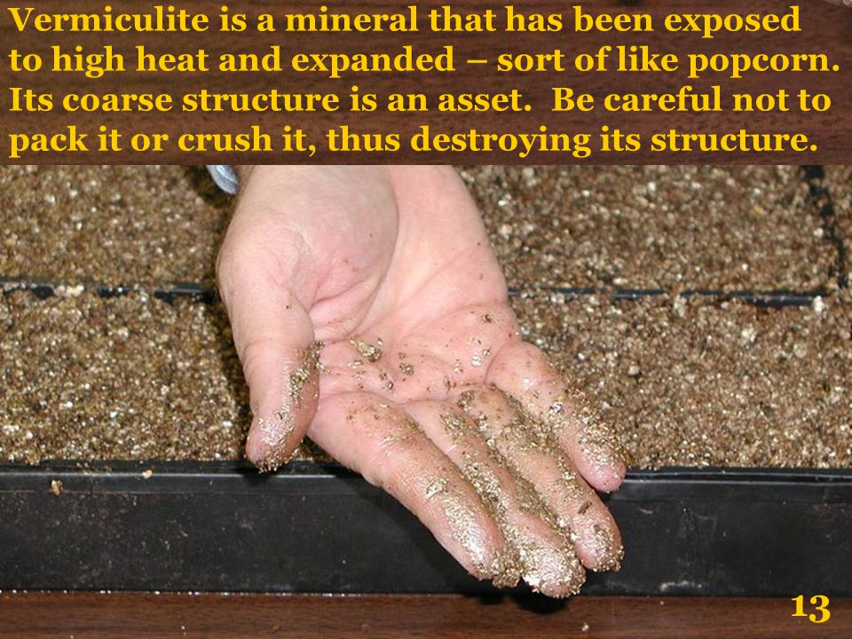 Vermiculite is a mineral that has been exposed to high heat and expanded – sort of like popcorn. Its coarse structure is an asset. Be careful not to pack it or crush it, thus destroying its structure.