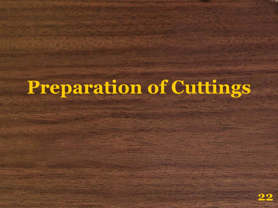 Preparation of Cuttings