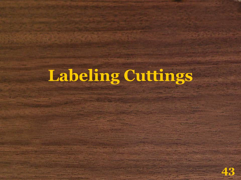 Labeling Cuttings 43
