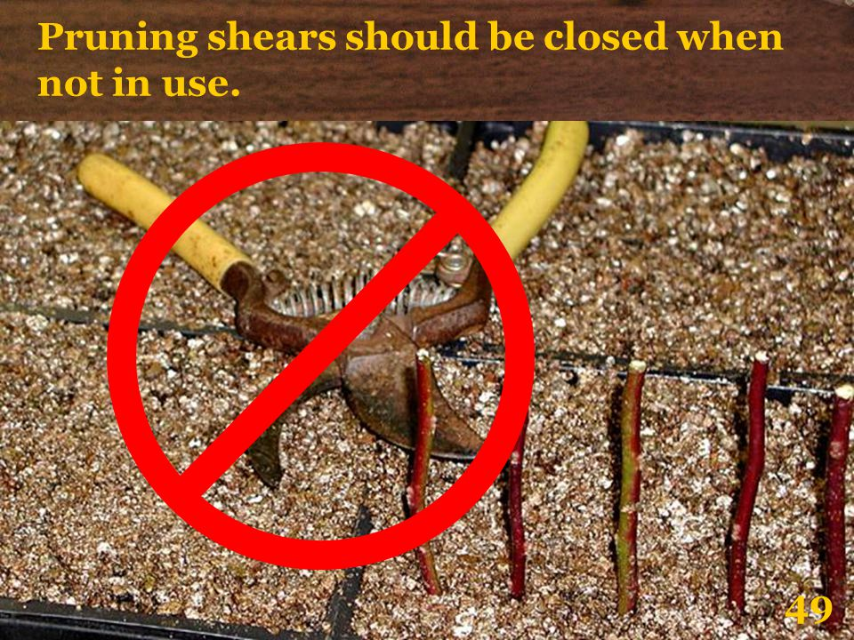 Pruning shears should be closed when not in use.