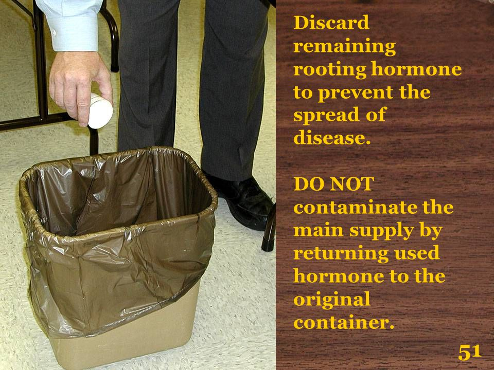 51 Discard remaining rooting hormone to prevent the spread of disease.