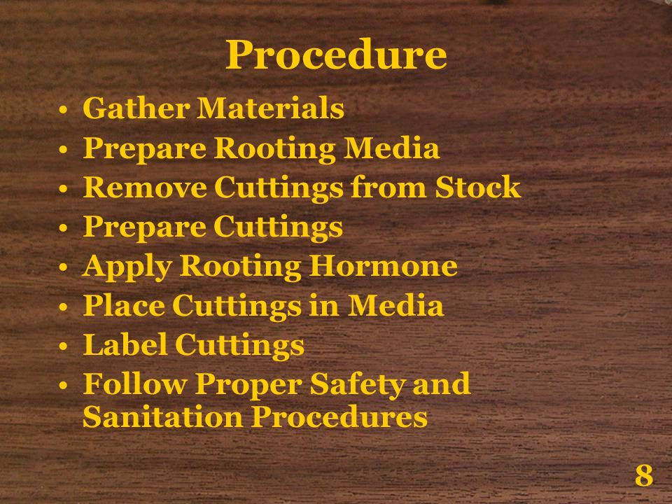 Procedure Gather Materials Prepare Rooting Media