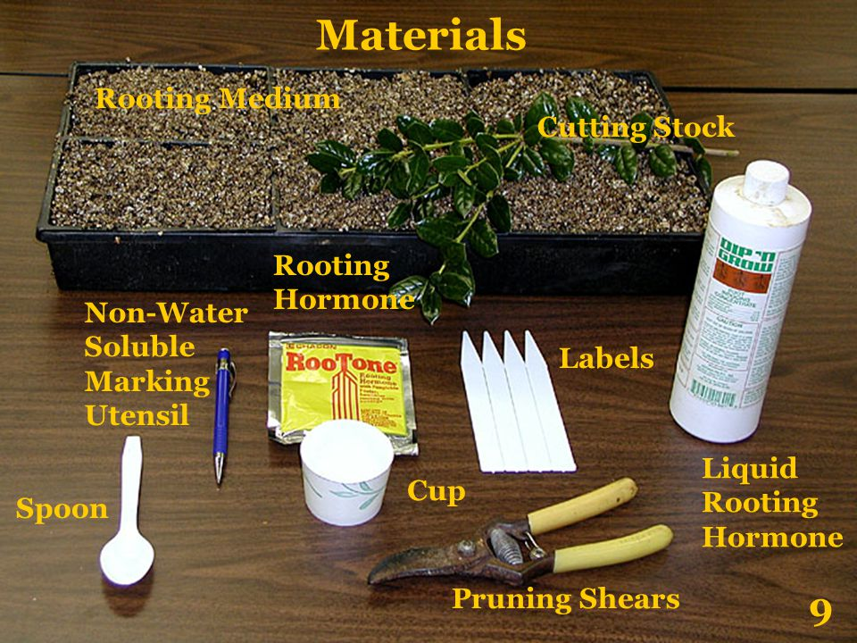 Materials 9 Rooting Medium Cutting Stock Rooting Hormone Non-Water