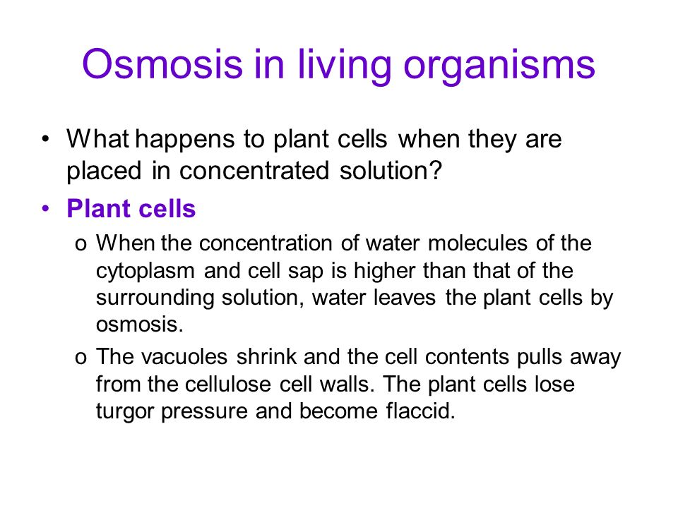 Osmosis in living organisms