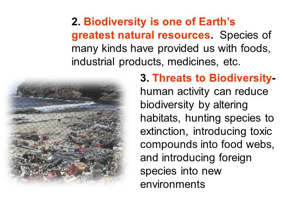 2. Biodiversity is one of Earth's greatest natural resources