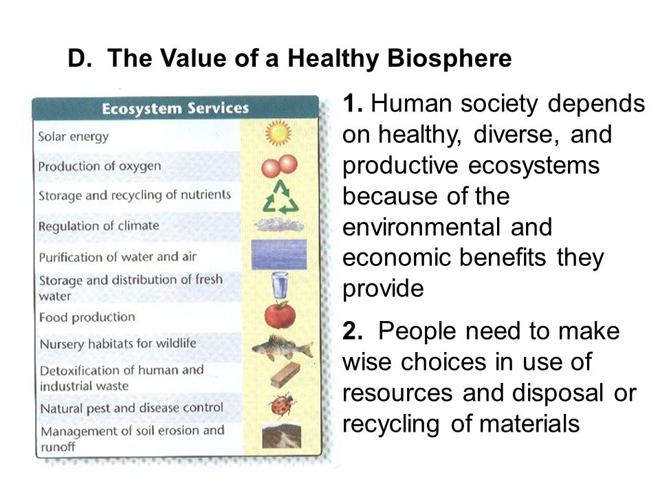 D. The Value of a Healthy Biosphere