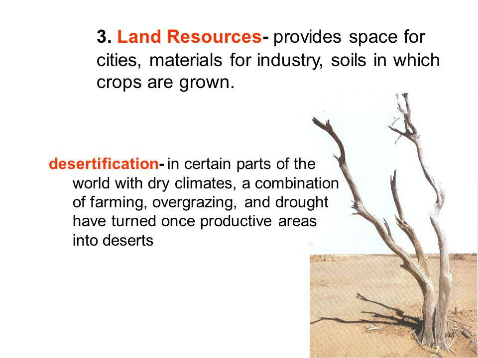3. Land Resources- provides space for