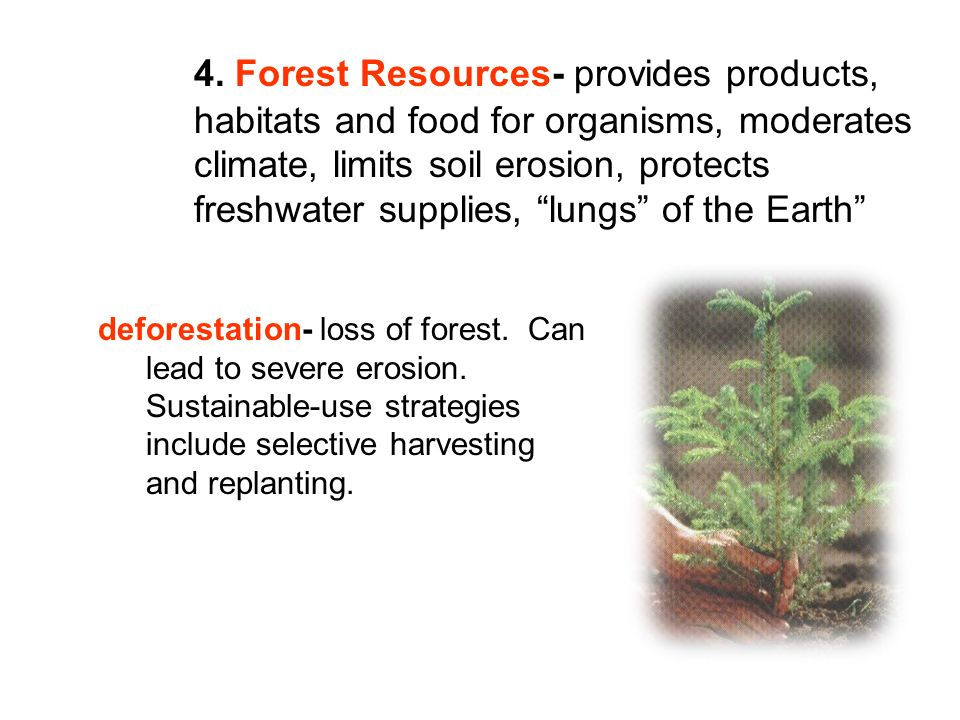 4. Forest Resources- provides products,