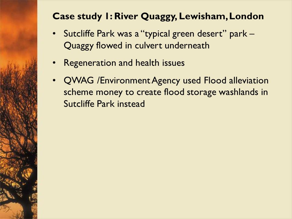 Case study 1: River Quaggy, Lewisham, London