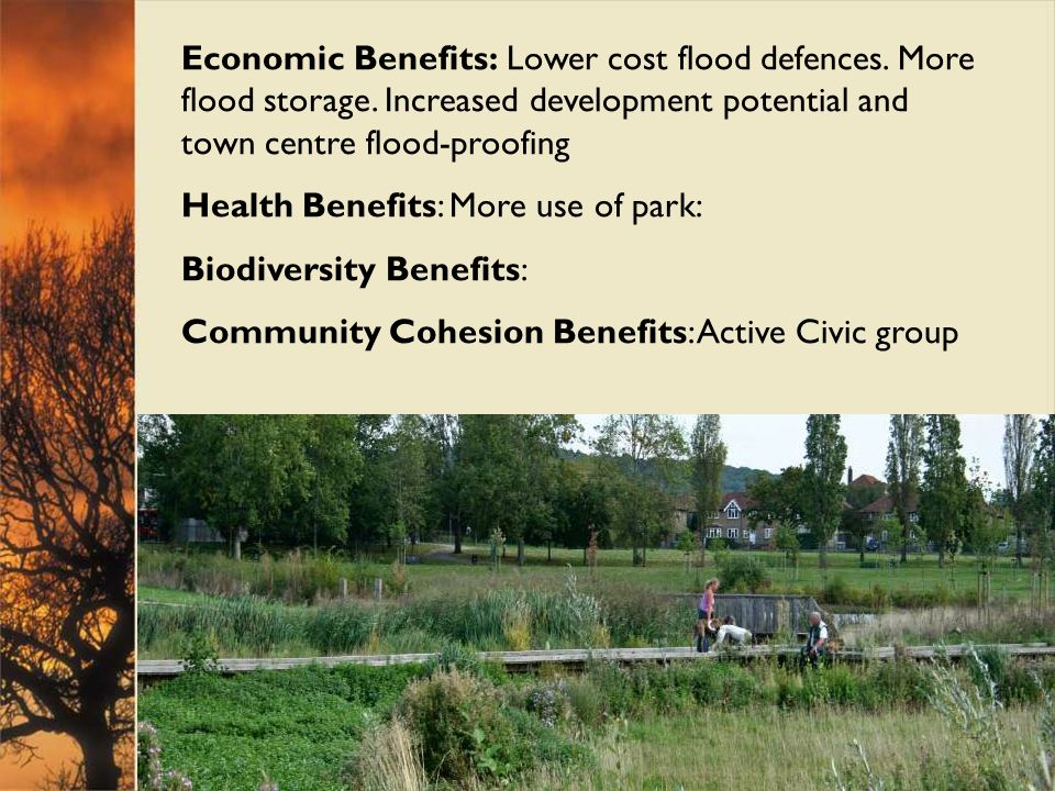Economic Benefits: Lower cost flood defences. More flood storage