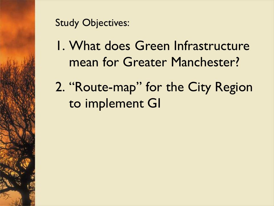 What does Green Infrastructure mean for Greater Manchester