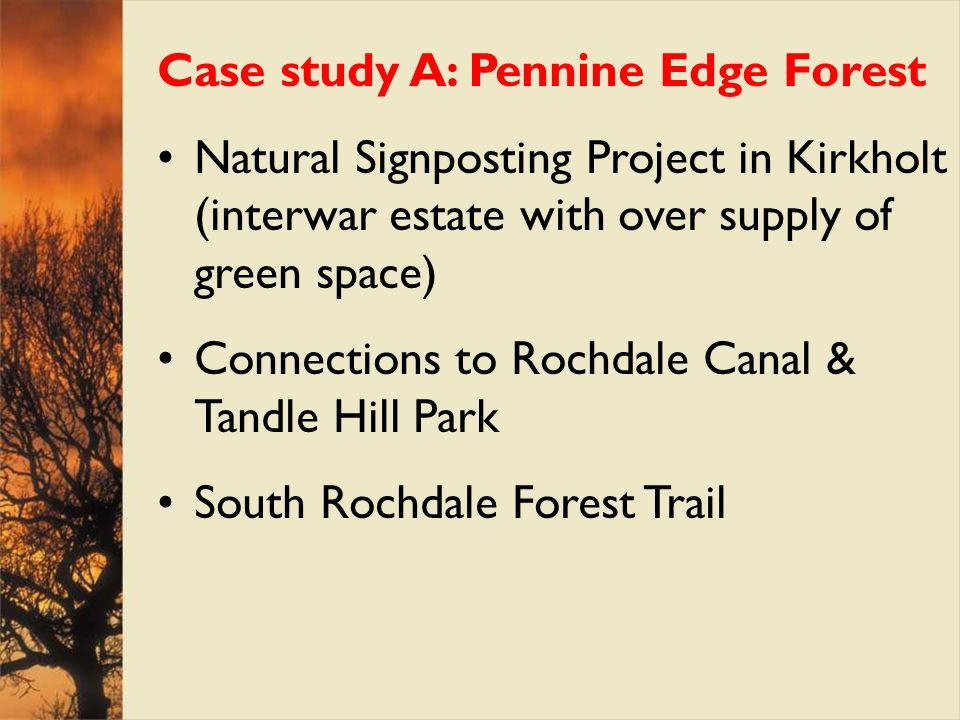 Case study A: Pennine Edge Forest