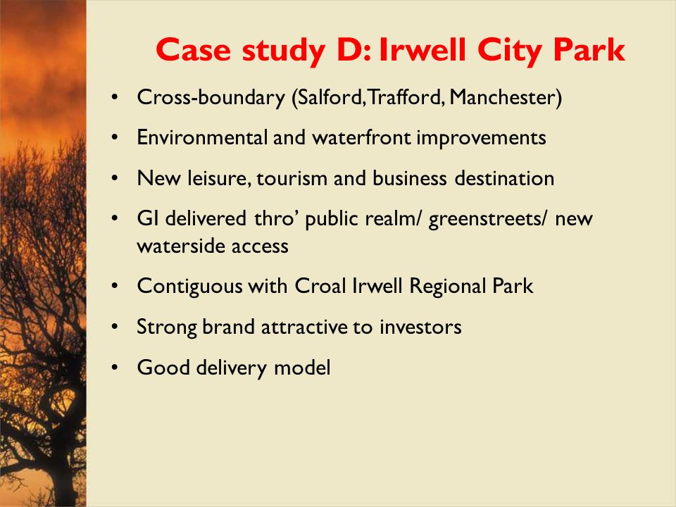 Case study D: Irwell City Park