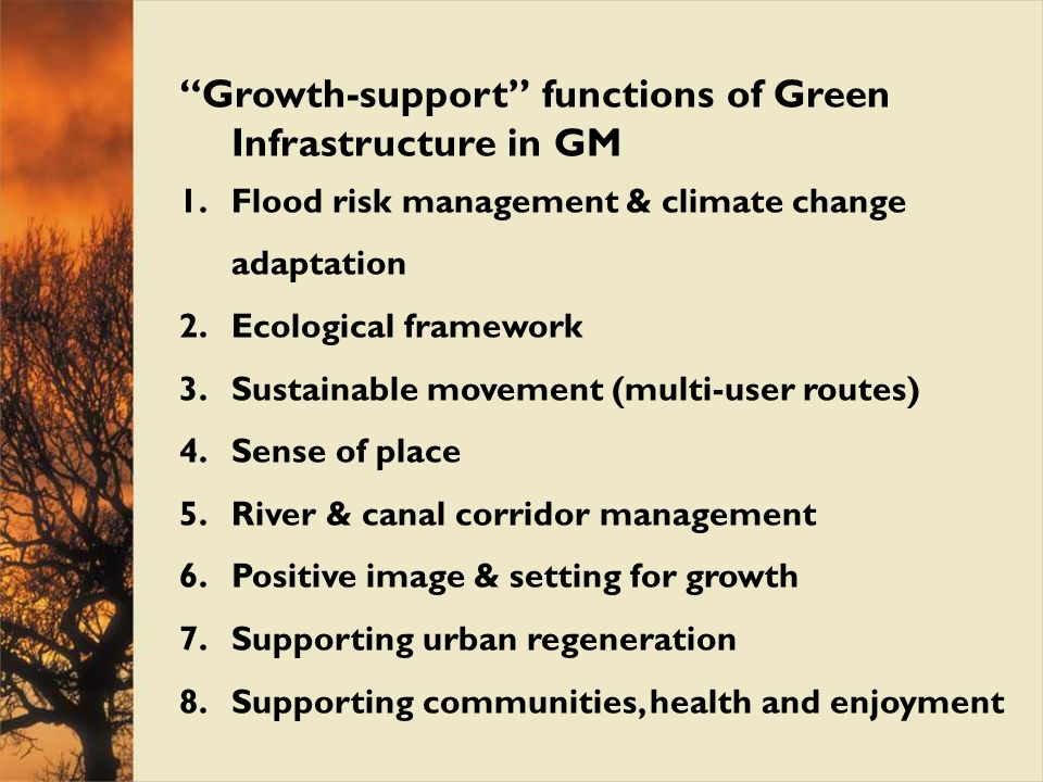 Growth-support functions of Green Infrastructure in GM