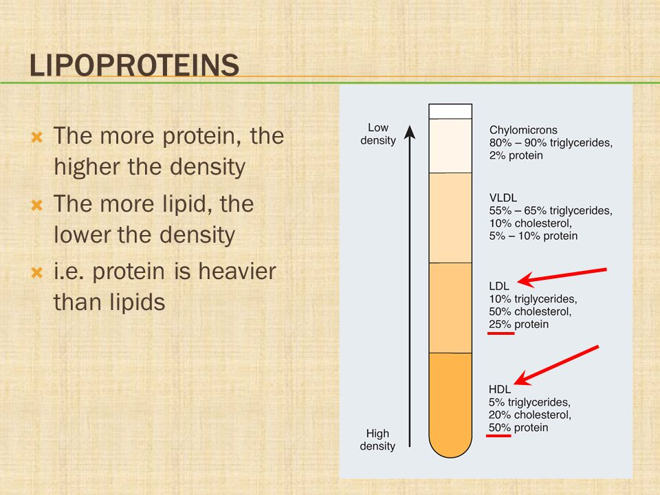 Lipoproteins The more protein, the higher the density