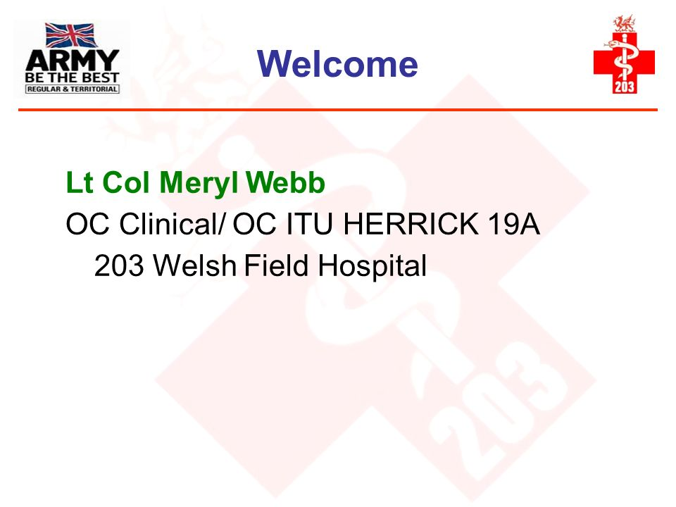 Welcome Lt Col Meryl Webb OC Clinical/ OC ITU HERRICK 19A
