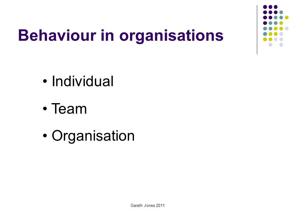 Behaviour in organisations