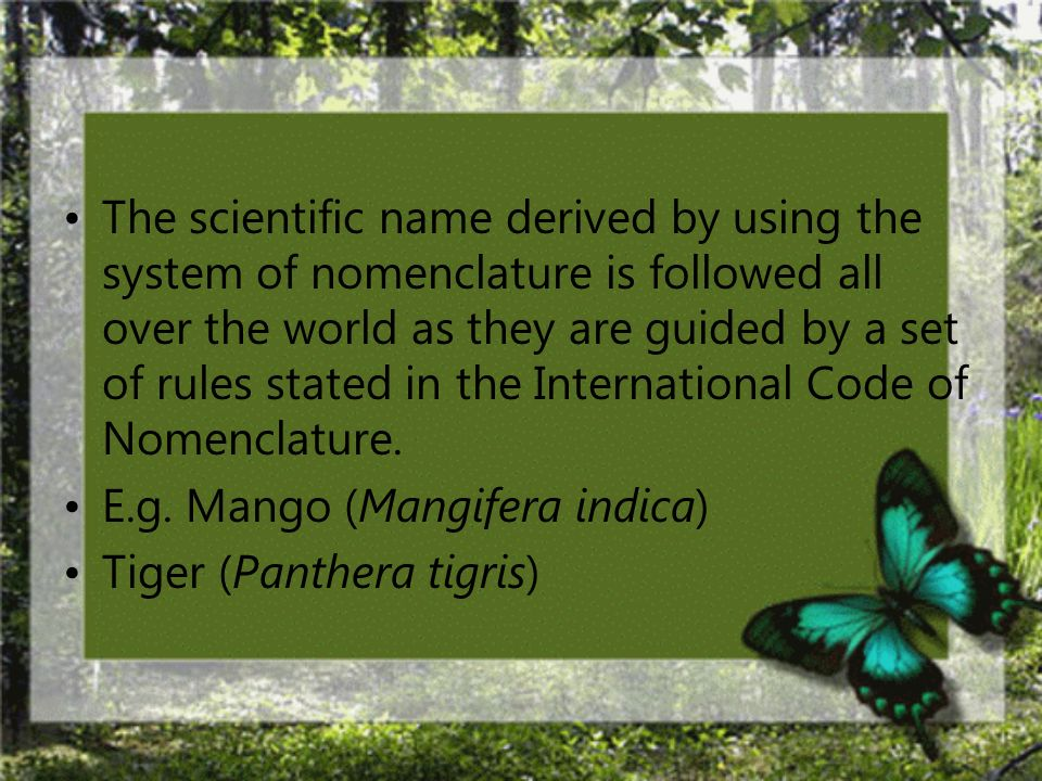 The scientific name derived by using the system of nomenclature is followed all over the world as they are guided by a set of rules stated in the International Code of Nomenclature.