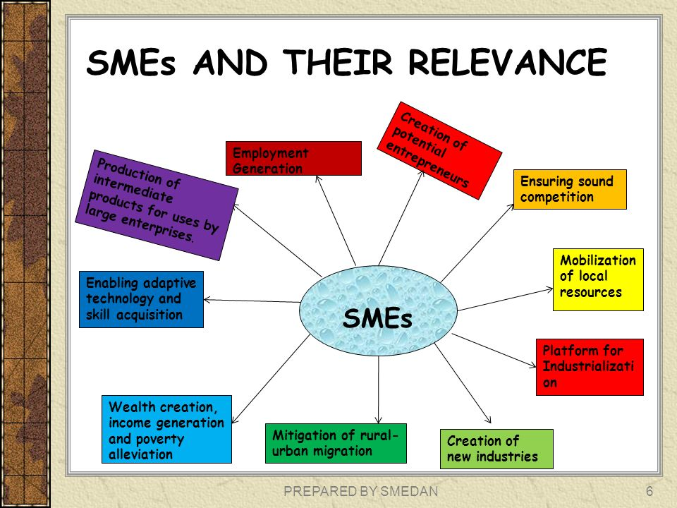 SMEs AND THEIR RELEVANCE