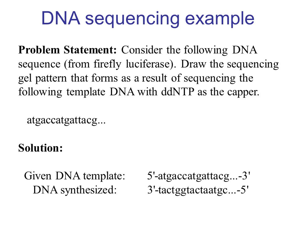 DNA sequencing example