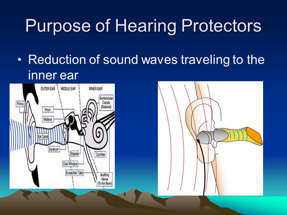 Purpose of Hearing Protectors