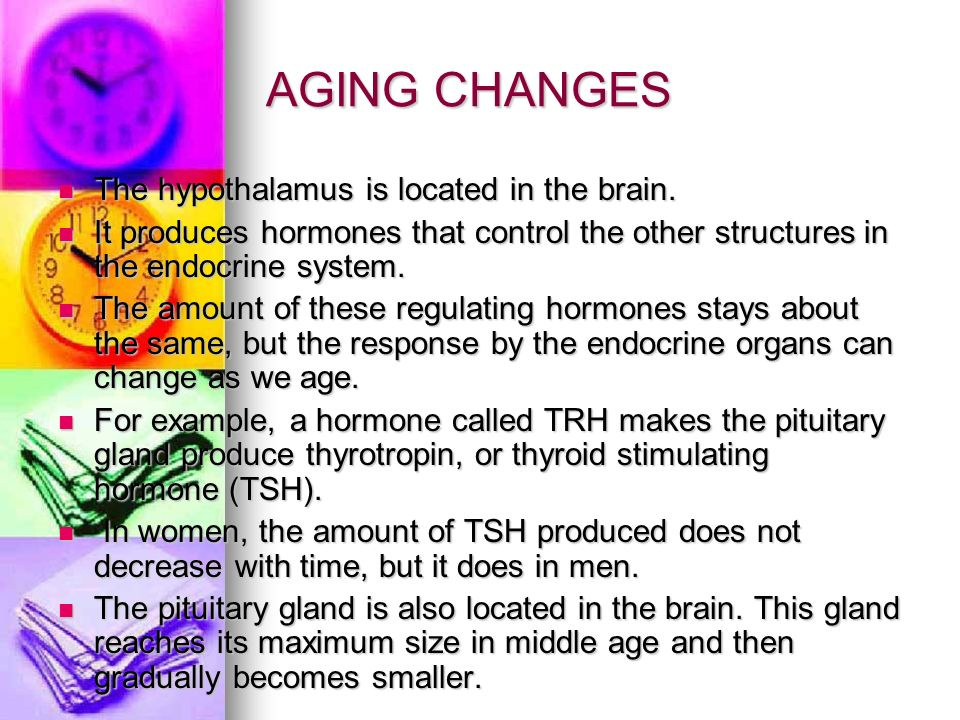 AGING CHANGES The hypothalamus is located in the brain.