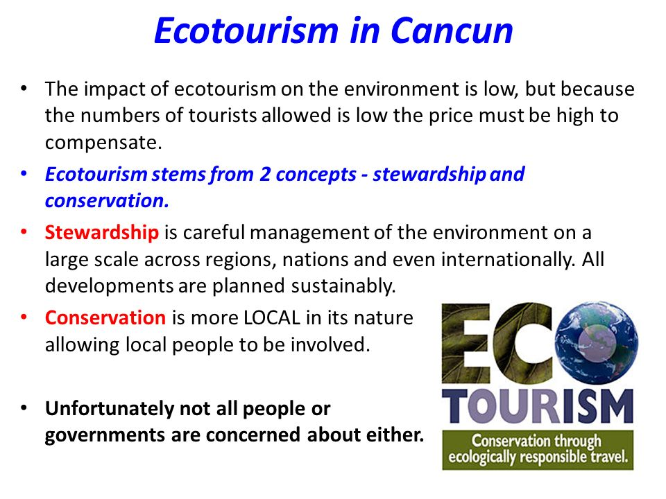 Ecotourism in Cancun