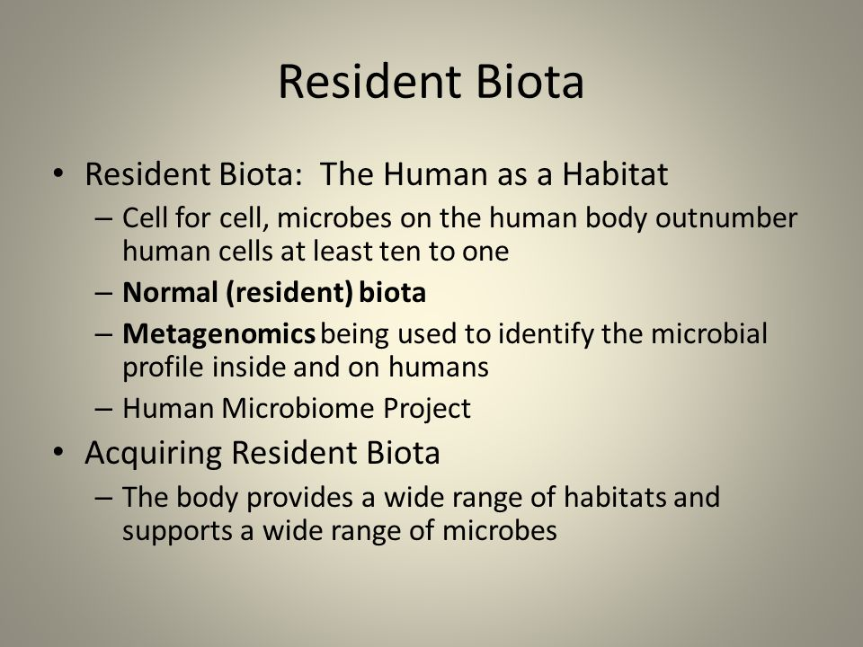 Resident Biota Resident Biota: The Human as a Habitat