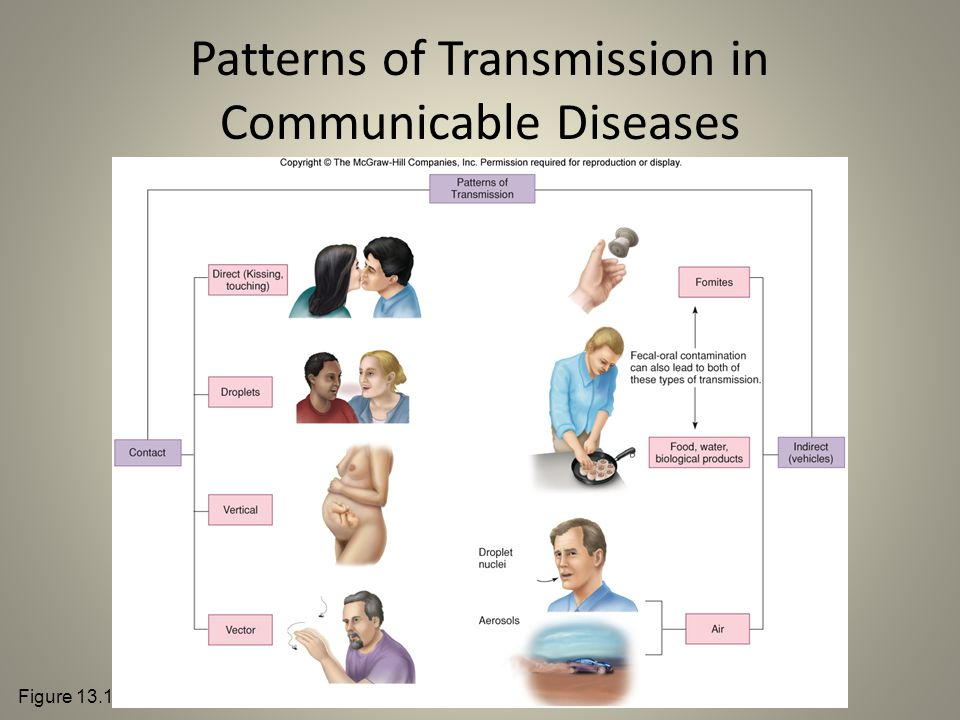 Patterns of Transmission in Communicable Diseases