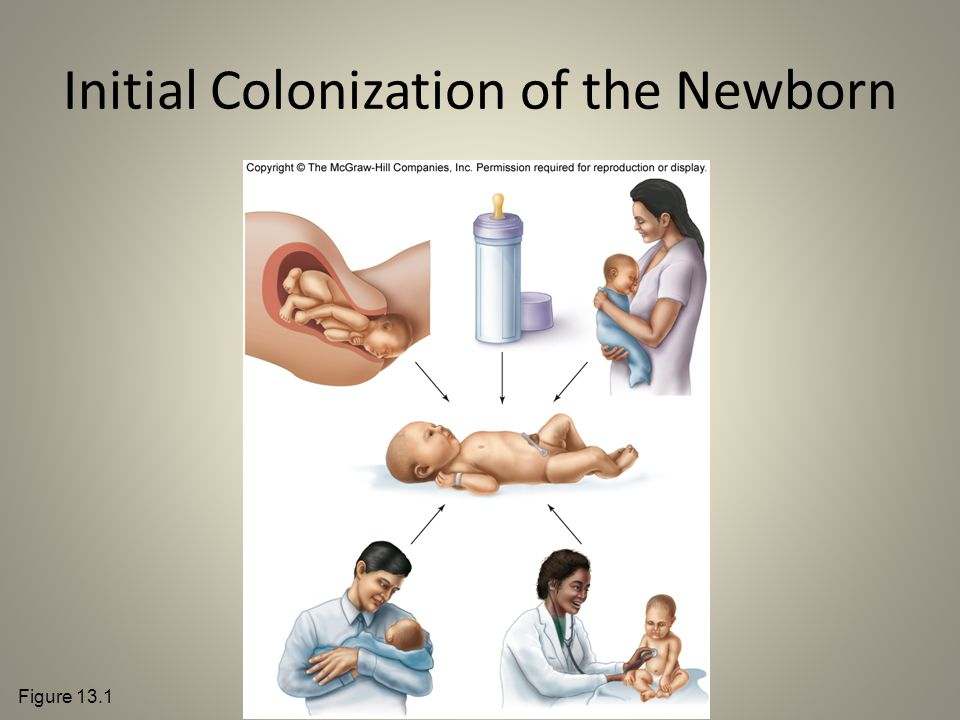 Initial Colonization of the Newborn