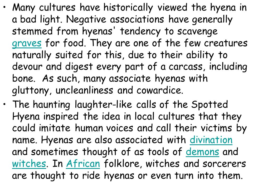 Many cultures have historically viewed the hyena in a bad light