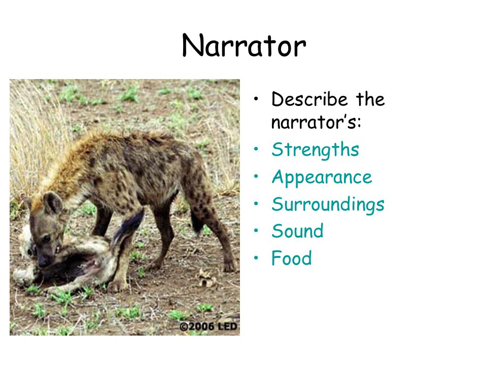 Narrator Describe the narrator's: Strengths Appearance Surroundings