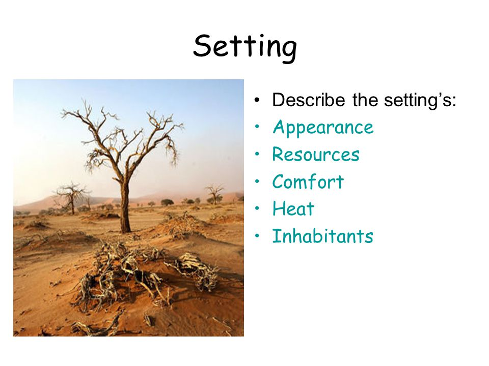Setting Describe the setting's: Appearance Resources Comfort Heat