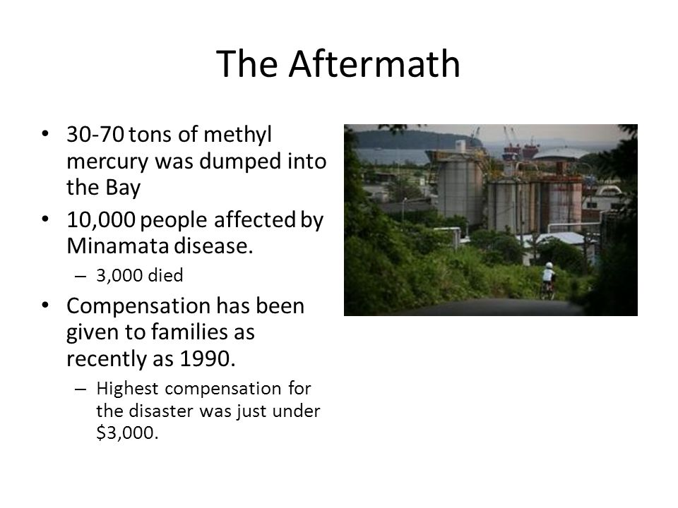 The Aftermath tons of methyl mercury was dumped into the Bay