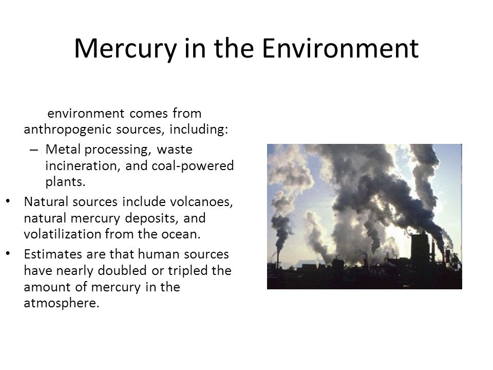 Mercury in the Environment