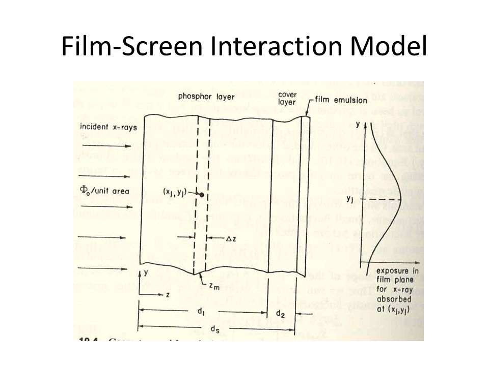 Film-Screen Interaction Model