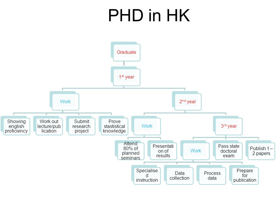 PHD in HK Graduate 1st year Work Showing english proficiency