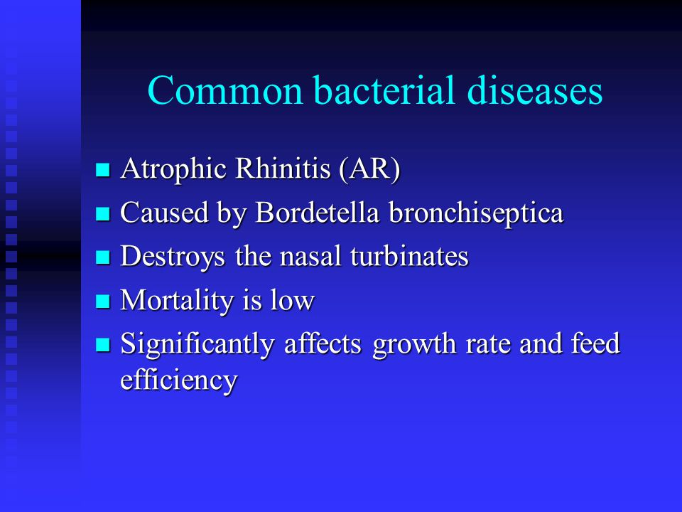 Common bacterial diseases