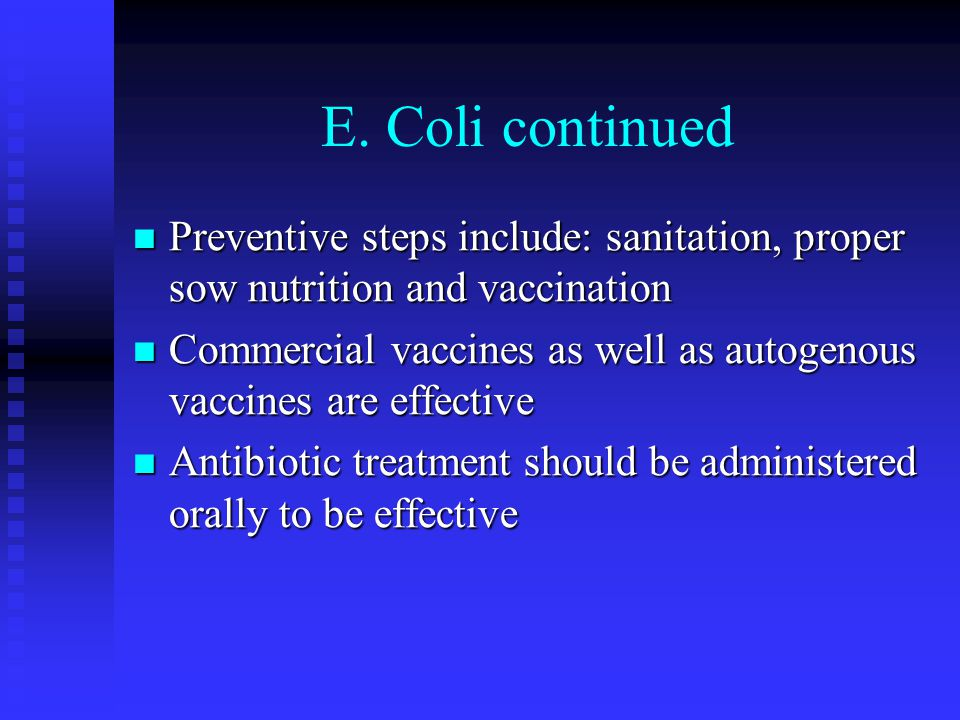 E. Coli continued Preventive steps include: sanitation, proper sow nutrition and vaccination.