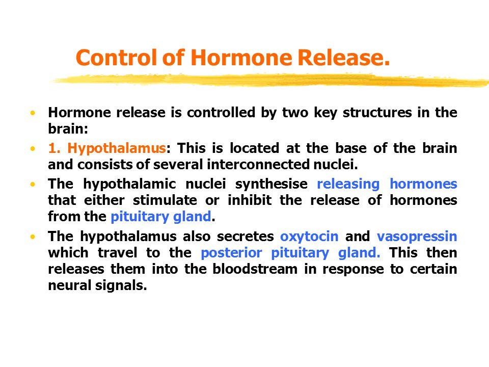 Control of Hormone Release.