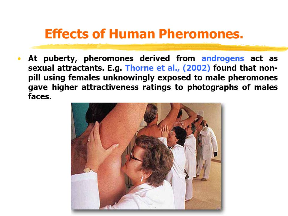 Effects of Human Pheromones.