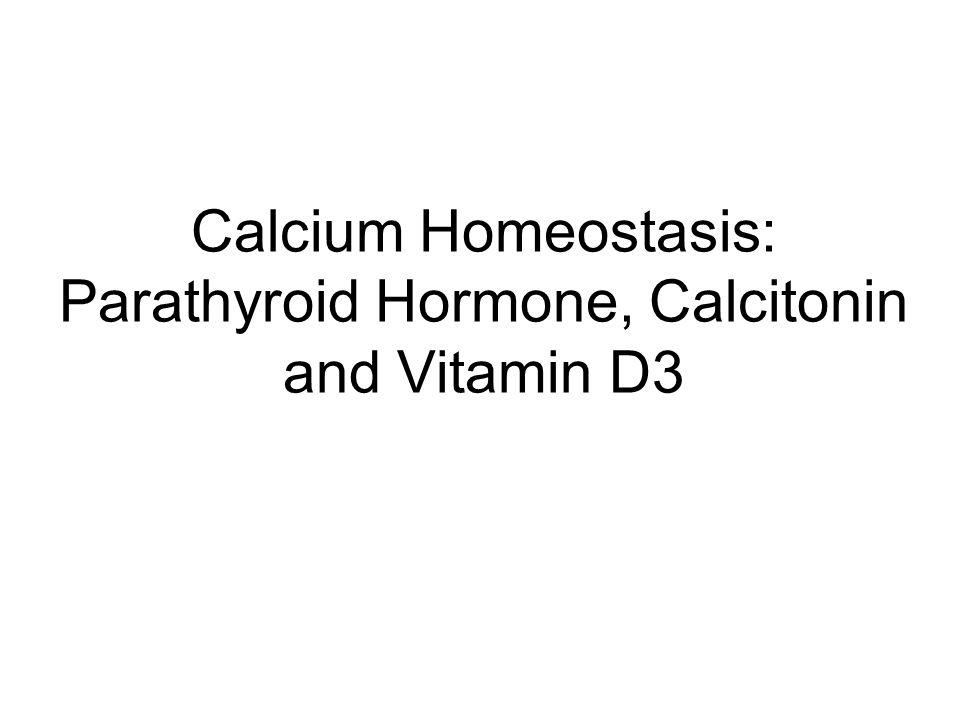 Calcium Homeostasis: Parathyroid Hormone, Calcitonin and Vitamin D3