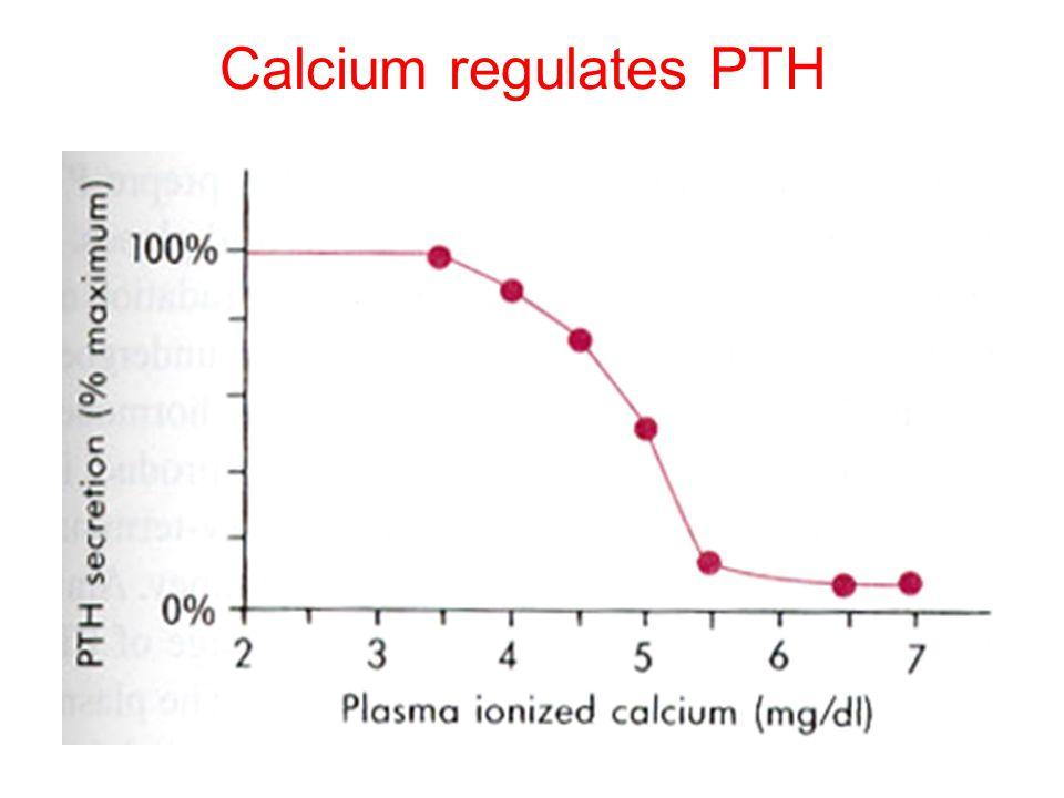 Calcium regulates PTH