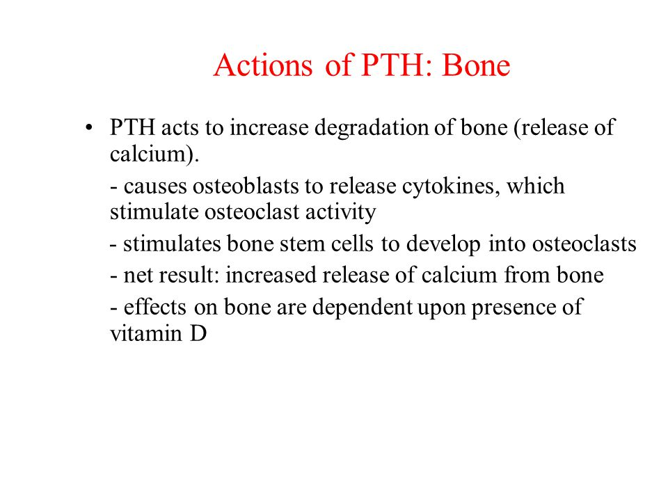 Actions of PTH: Bone PTH acts to increase degradation of bone (release of calcium).
