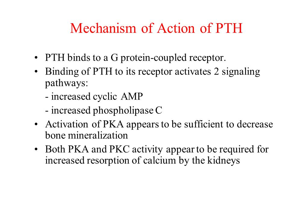 Mechanism of Action of PTH